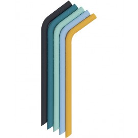 Cannucce usa e riusa Verde/blu + scovolino