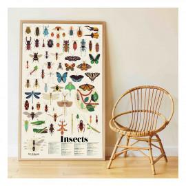 Poster Sticker insetti poppik