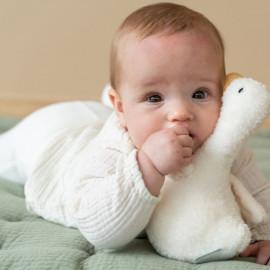 Tumbler little dutch little goose